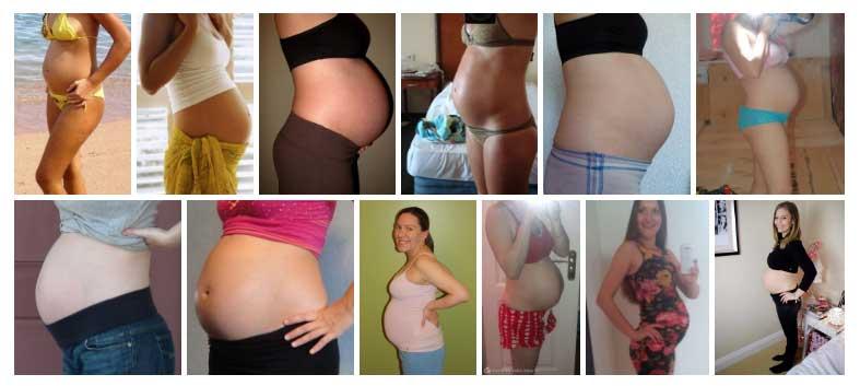 7 meses de embarazo fotos de panzas