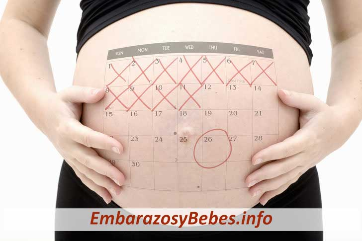 979c3e965 ▷ Cuantas Semanas Dura Un Embarazo Normal (Como Calcularlo )