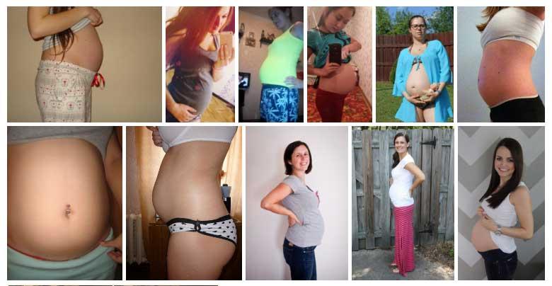 Semana 24 de Embarazo Panza