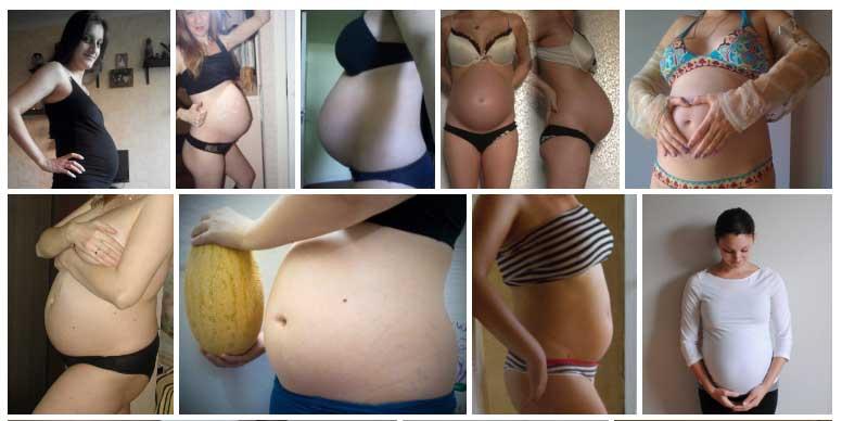 Semana 26 de Embarazo Panza
