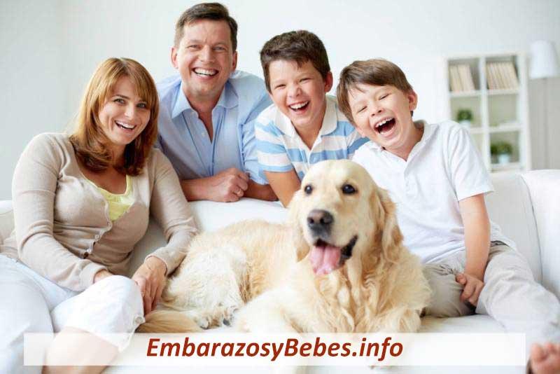 Beneficios Para La Salud de Tener Una Mascota