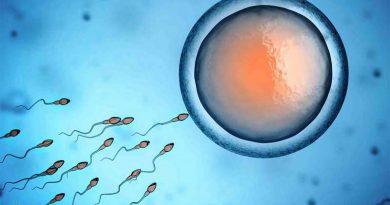Puedo Quedar Embarazada Después de la Ovulación