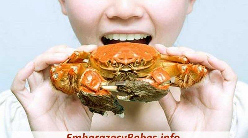 Se Puede Comer Cangrejo en el Embarazo