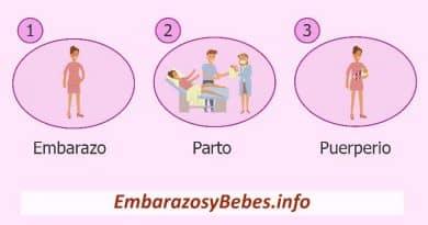 Embarazo Parto y Puerperio