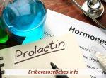 ¿Por Qué Se Realiza Una Prueba De Nivel De Prolactina?